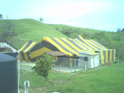 Clown house