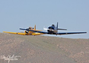 A pair of T-6 battle