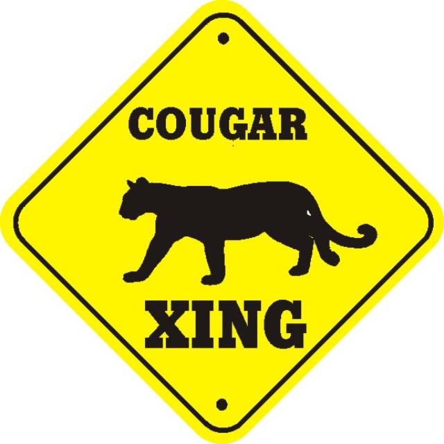cougar_xing_thumb_640.jpg