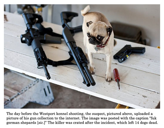 kennel-shooting